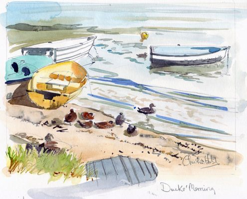 Careel Bay - ducks morning